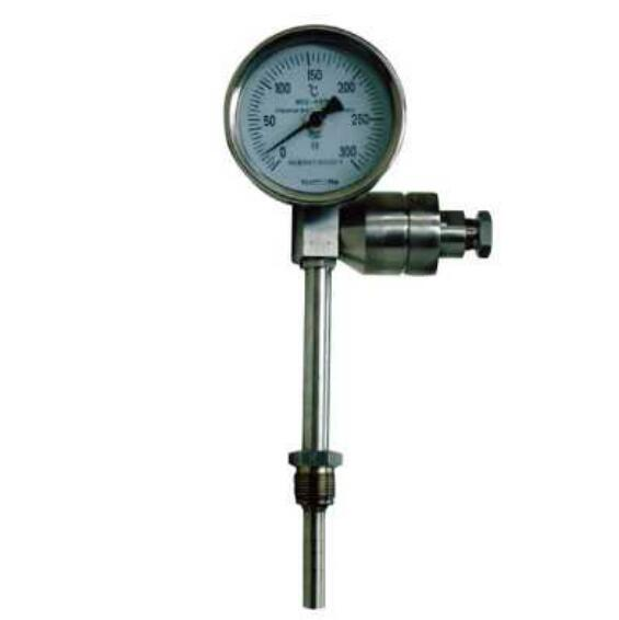 AnHui TianKang (Group)Shares Co.,Ltd Bimetal thermometer with remote transmission
